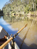 Rowing Yarra River Melbourne — Stock Photo