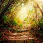 escadas com raios de sol — Foto Stock