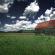 Old barn in the grassy field — Stock Photo #30827231