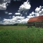 Old barn in the grassy field — Stock Photo