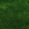 Beautiful green grass texture from golf course — Stock Photo #30828139