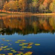 Mountain lake in autumn  — Stock Photo