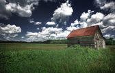 старый сарай в травянистых области — Стоковое фото