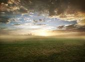 Puesta de sol terreno herboso — Foto de Stock
