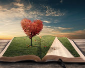 Heart tree and book — Stock Photo