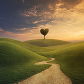 Tree heart on hill — Foto Stock