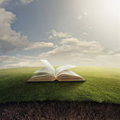 Bible on grass. — Stock Photo