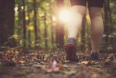 Woman walking through forest — Stock Photo