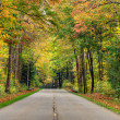Stock Photo: Autumn road
