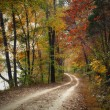 Autumn Pathway — Stock Photo