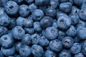 Blueberries background — Stock Photo