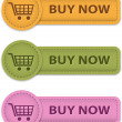 Buy Now buttons - Stok Vektör