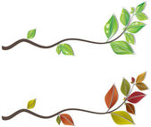 Branches of leaves — Stock Vector