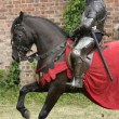 Knight on horse — Stock Photo