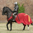 knight on horse — Stock Photo #12519718