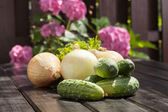 Cucumber an onion — Stock Photo