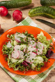 Salad with radish and green cucumber — Stock Photo