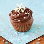 Christmas cupcake — Stock Photo #13193138