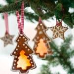 Christmas cookies — Stock Photo #14095778