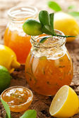Lemon and Lime Marmalade — Stock Photo