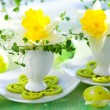 Narcissi in eggcups  — Stockfoto