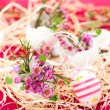 Foto Stock: Pink flowers in eggshells