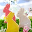 Stock Photo: Easter bunny cookie