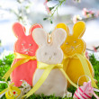 Easter bunny cookie — Stock Photo