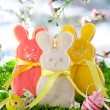 Easter bunny cookie — Stock Photo #19399825