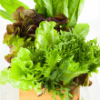 Fresh lettuces — Stock Photo #22393707