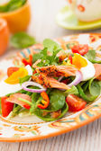 Salmon salad — Stockfoto