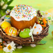 Easter cake and l eggs - Photo