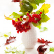 Red viburnum berries and gloriosa — Stock Photo