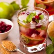 Stock Photo: Cranberry mojito