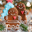 Gingerbread couple — Stock Photo #34302671