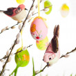 Stock Photo: Easter eggs and birds