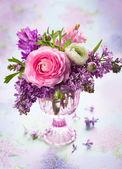 春の花 — ストック写真