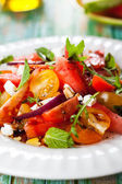 Tomato and Watermelon Salad — Stok fotoğraf