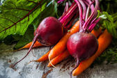 Fresh carrots and beetroots — Stock Photo