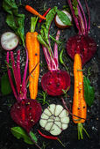 Carrot and beetroot — Стоковое фото