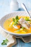 魚のスープ — ストック写真