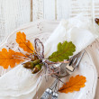 Autumn table setting — Stock Photo #50882793