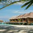 Maldives bungallow with palm tree as foreground element — Stock Photo #37161945