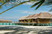 Maldives bungallow with palm tree as foreground element — Stock Photo
