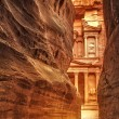 Siq in Ancient City of Petra, Jordan — Stock Photo #37564755