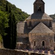 Senanque Abbey in Provence region in France in vertical position — Stock Photo