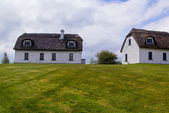 Typical old Irish house located — Stock Photo