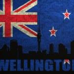 View of Wellington — Stock Photo #23583937