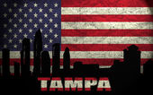 View of Tampa City — Stock Photo