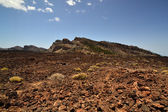 Lava field — Stock Photo